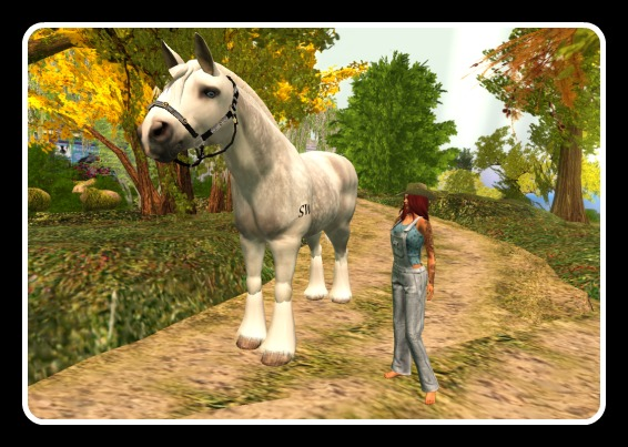 waterhorse_001